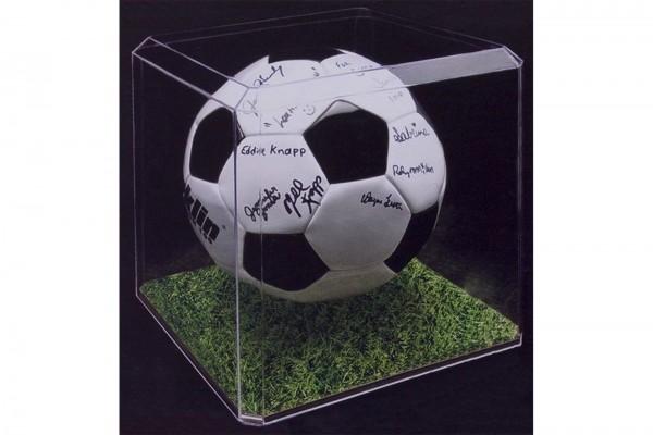 Pioneer Plastics - hochwertige Vitrine aus Acryl zum Sammeln und Verstauen eines Fußballs, klar
